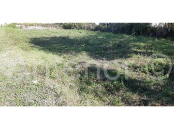 Plot for construction, Sale, Nin, Nin